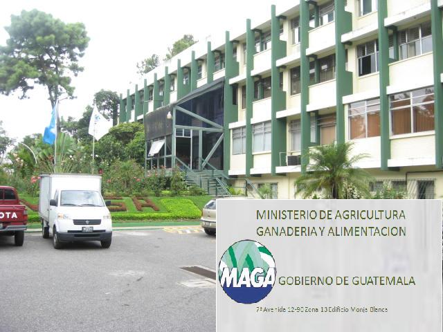 Ministerio de agricultura y ganaderia share the knownledge for Ministerio de ganaderia
